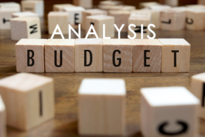 Analysis of Budget 2020